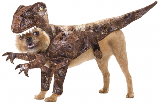 Velociraptor dog costume